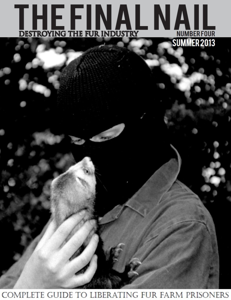 Final Nail #4 cover