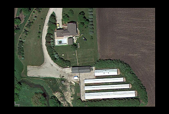Security alert #28: FBI claims new evidence in Illinois mink farm raid