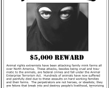 Fur farmers put ALF wanted posters in vegan restaurants